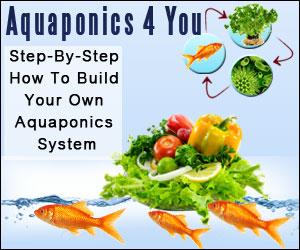 Aquaphonics for You